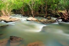 瀑布和小河在森林泰国里 免版税图库摄影