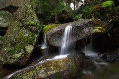 瀑布和岩石 库存图片