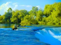 瀑布和树在一个晴天2 库存图片