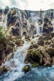 瀑布和树在九寨沟风景名胜区,四川,中国 免版税库存照片