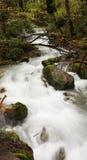 瀑布和流 图库摄影