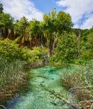 瀑布和浅水区在Plitvice国家公园 免版税库存图片