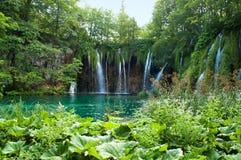 瀑布和湖用透明鲜绿色水 免版税库存照片