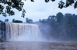 瀑布和白鹭 库存图片