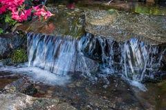 瀑布和花特写镜头2 免版税图库摄影