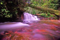 瀑布和蓝色小河在森林里 免版税库存照片