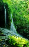 瀑布和绿色森林 免版税图库摄影