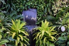 瀑布和绿色 免版税图库摄影
