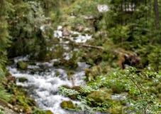 瀑布和watermill在萨尔茨堡, Golling阿尔卑斯附近 库存照片