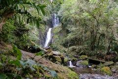 瀑布哥斯达黎加 库存图片