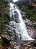 瀑布在一个国家公园在巴西 图库摄影