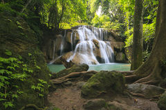 瀑布在一个深森林里 免版税库存图片