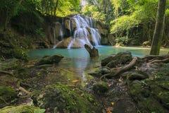 瀑布在一个深森林里 免版税图库摄影
