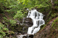 瀑布在一个绿色森林里。 免版税库存照片