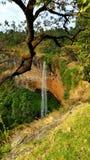 瀑布在乌干达 库存图片