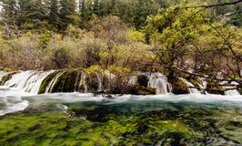 瀑布在九寨沟,四川中国 免版税图库摄影
