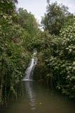 瀑布在以色列内盖夫加利利 库存照片