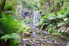 瀑布在伟大的Otway国家公园在维多利亚,澳大利亚 库存照片