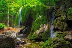 瀑布在克里米亚森林和弄湿了生苔石头 免版税图库摄影