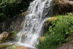 瀑布在全国dendrological公园 库存照片