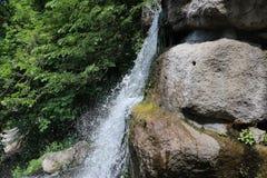 瀑布在全国dendrological公园 免版税库存图片