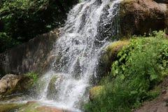 瀑布在全国dendrological公园 免版税库存照片
