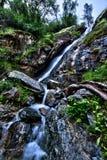 瀑布在公园 免版税库存照片