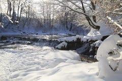 瀑布在冬天森林里 免版税图库摄影