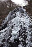 瀑布在冬天 库存图片