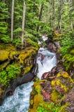 瀑布在冰川国家公园落下下来,虽然一个五颜六色的森林 免版税库存图片