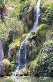 瀑布在凝思庭院里在圣塔蒙尼卡,美国 库存图片