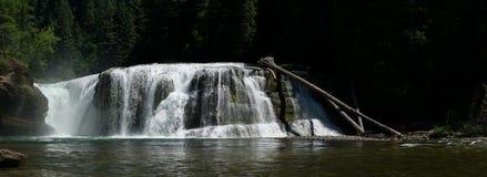 瀑布在华盛顿 免版税图库摄影