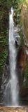 瀑布在卡塞森林里,坦桑尼亚 库存照片