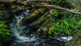 瀑布在卡累利阿 免版税图库摄影