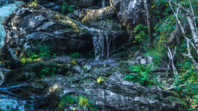 瀑布在卡累利阿 库存照片