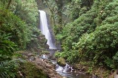 瀑布在哥斯达黎加 免版税库存图片
