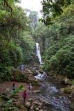 瀑布在哥斯达黎加 库存照片