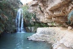 瀑布在国家公园在死海附近的Ein Gedi在以色列 库存照片