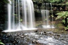 瀑布在塔斯马尼亚岛森林里 免版税库存图片