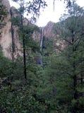 瀑布在墨西哥 免版税图库摄影
