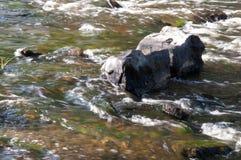 瀑布在夏天 清楚和淡水跌倒 色彩绿色,蓝色和白色 有灰色石头里面 Fotogr 免版税库存照片