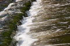 瀑布在夏天 清楚和淡水跌倒 色彩绿色,蓝色和白色 有灰色石头里面 Fotogr 免版税库存图片