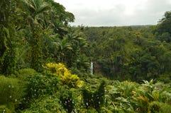 瀑布在夏威夷 图库摄影