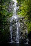 瀑布在夏威夷 库存图片