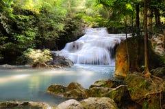 瀑布在大森林里 库存图片
