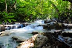 瀑布在大森林里 免版税库存照片