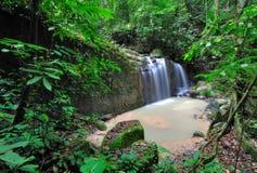 瀑布在婆罗洲密林 库存照片