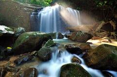 瀑布在婆罗洲的密林 库存照片