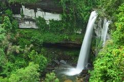 瀑布在密林 免版税库存照片
