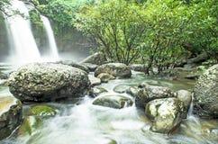 瀑布在密林 免版税库存图片